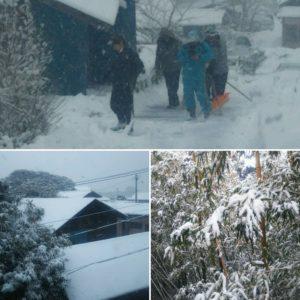 雪景色の田代島