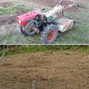 南瓜の畑の整備。古い耕運機ですが、働き者です。